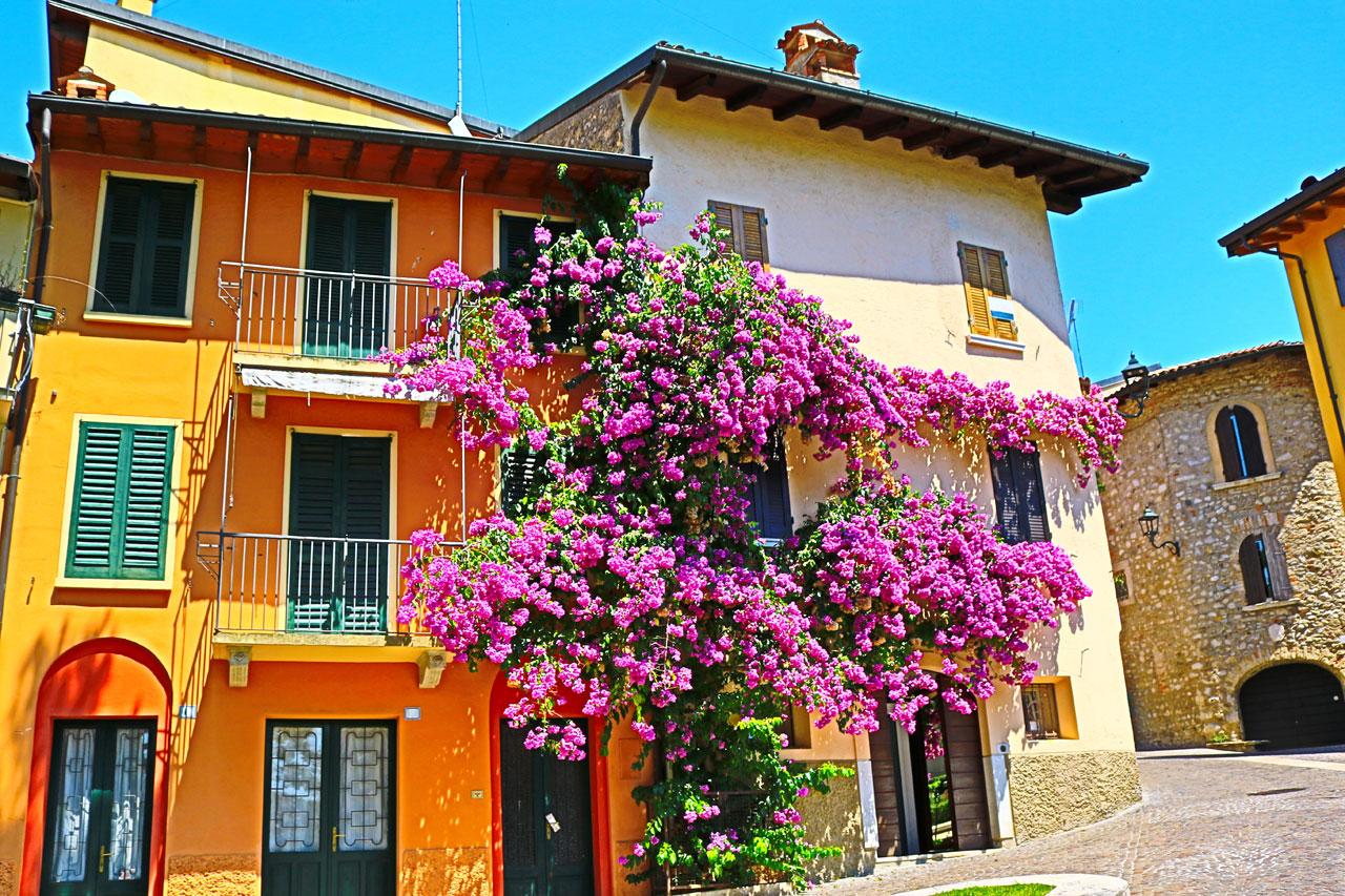 Gardon Riviera